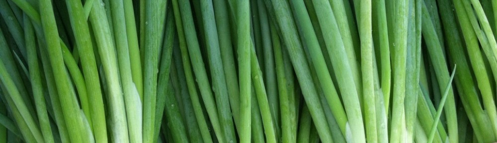 wildscallion